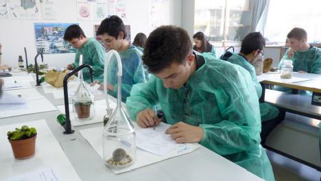 Participantes de la Olimpiada de Biología 2012 en el ejercicio práctico