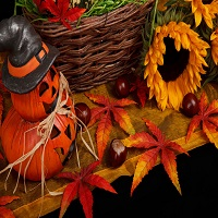 halloween-autumn-theme-11287576365WuEn